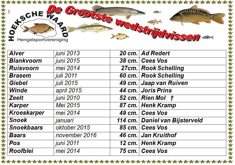 grootste-wedstrijdvis-senioren